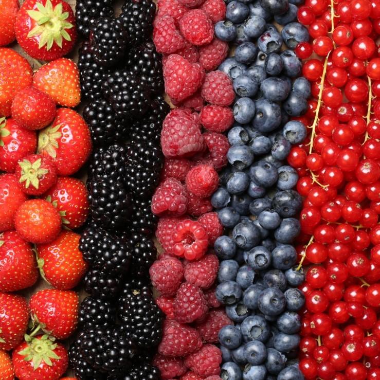 frutos rojos fragancias