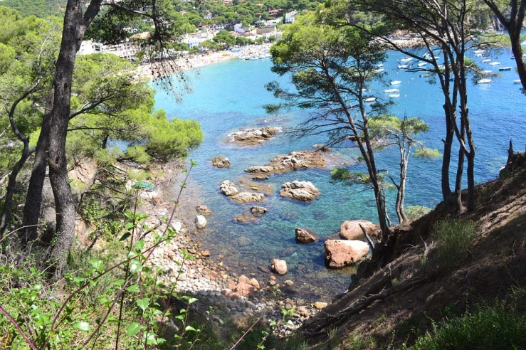 pino mediterraneo eau de beaux